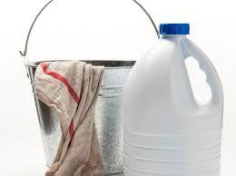 bleach cleanig produt for shower