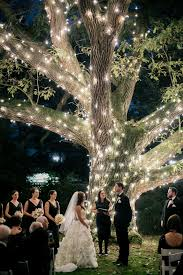 Wedding Tree Lights A Magical Romantic Wedding At Aldie Mansion In Doylestown