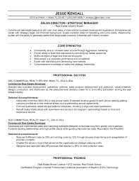 Sample Resume Of Sales Manager In Real Estate New Resume Format For