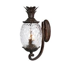 Acclaim Lighting Lanai 18-in H Black Coral Outdoor Wall Light