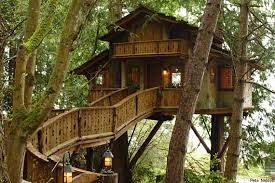 I Want To Live In A Treehouse  Courtney DoberTreehouse Builder Pete Nelson