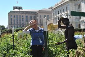 AskUSDA: A Conversation Between Gardeners | USDA