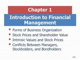 An Overview of Financial Management - ppt download
