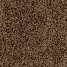 shaw workhorse rr 12ft w x cuttolength walnut textured interior lowes carpet prices e6