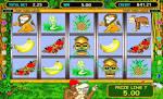 Преимущества игрового автомата Crazy Monkey