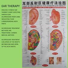 Chinese Ear Chart Amazon Com 600pcs Chinese Dragon Ear Massage Seeds