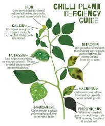 Plant Nutrient Deficiency Chart Pdf Www Bedowntowndaytona Com