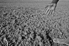 file drought affected area in karnataka jpg  file drought affected area in karnataka 2012 jpg