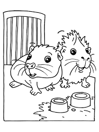 Small Picture Cute Baby Guinea Pig Coloring Page Color Luna