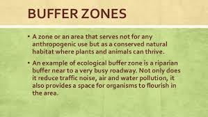 Environmental Buffers