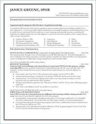 Program Manager Resume Samples Custom Program Manager Resume Sample Luxury 48 Awesome Program Manager