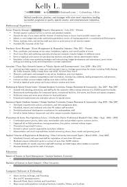 what is literary essay planning