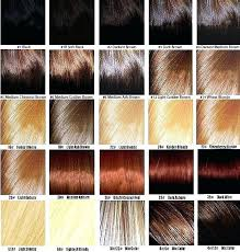 Ion Hair Dye Color Chart 28 Albums Of Sallys Ion Hair Color Chart Explore