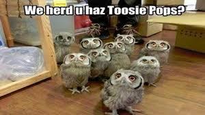 Tootsie-Pops.jpg via Relatably.com