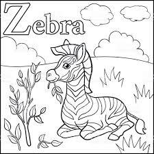 Coloriage Alphabet Animaux De Dessin Anim Z Est Pour Zebra Stock