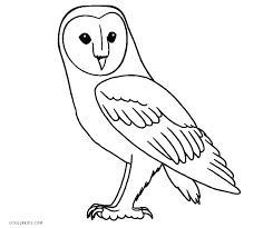 Barn Owl Chibi Coloring Pages Print Coloring