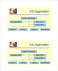 Sample Ics Organizational Chart 8 Documents In Pdf