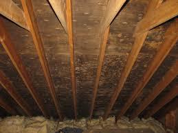 mold in attic. Unique Attic Attic Ceiling MoldMold RemediationLowell MA In Mold L
