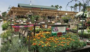 armstrong garden center locations. Exellent Locations 1st Armstrong Garden Centers And Center Locations