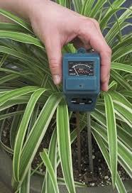 Plant Moisture Meter Chart Soil Moisture Monitoring Tips On Checking Plant Moisture