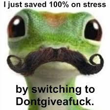 Stress-Free Gecko – (Meme) | anonamos3021 via Relatably.com