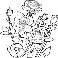 Pretty Flower Coloring Pages Danielstevensinfo