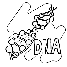 Small Picture Picture Collection Science Coloring Pages Coloring Steps