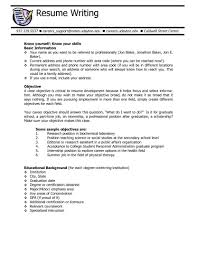Resume Objective Statement Example How To Write A For Customer