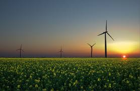 essay on renewable resources essays on energy sources a definitive  renewable energy simple english the encyclopedia renewable energy sources wind sun and biomass