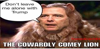 Image result for james comey as cowardly lion dont leave me with trump