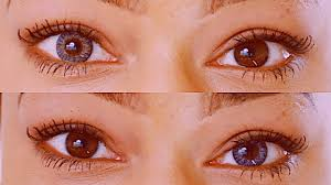 Freshlook Color Chart For Dark Eyes Are Gray Contacts On Brown Eyes Realistic Freshlook Sterling Gray Contacts