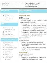 Example Accounting Resume Ellseefatih Com