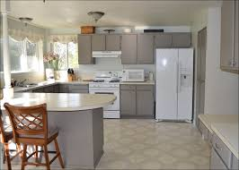 kitchen cabinet spray paintCost To Paint Kitchen Cabinets Cost To Paint Kitchen Cabinets