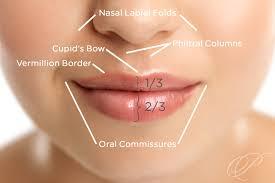 Lip Filler Chart Beautiful Lips At Any Age Premier Dermatology