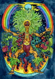 The Colonization of the Ayahuasca ...