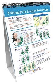 Genetics The Study Of Heredity Newpath Science Flip Chart Set