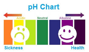 Alkaline Ph Level Chart Analyzing Comparing Brands Of Bottled Water