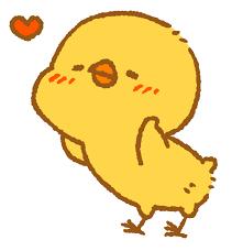 恋するひよこ : InConFuoco!(インコンフォーコ!)—小鳥まみれのイラストBLOG—