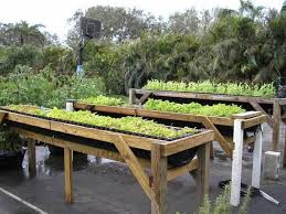 how to build a vegetable garden. Construction DIY Raised Beds In The Vegetable Garden How To Build A