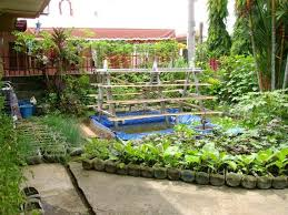 Small Picture Best Of Backyard Vegetable Garden Ideas For Small Yards Vegetable