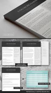 Professional Resume Template Set Plain But Trendy