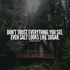 Taking Advantage Quotes Delectable 48 Trust Quotes That Prove Trust Is Everything
