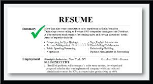 Career Summary Examples How To Write A Professional Summary On Resume Examples Homely Ideas