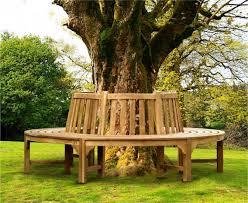 Teak Circular Tree Bench - 220cm