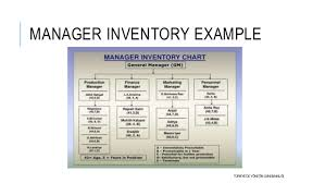 Manager Inventory Chart Human Resource Planning Hrp