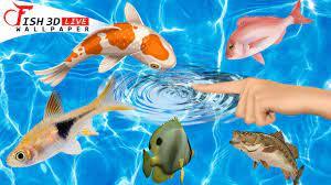 Fish 3D Live Wallpaper : Koi 3D Fish ...