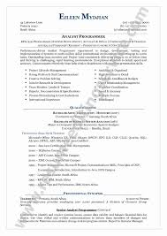 50 Fresh Sample Combination Resume Resume Ideas Resume Ideas