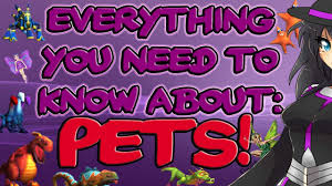 Wizard101 How To Make Or Copy The Perfect Pet 2017 Tutorial Heather The Wizard