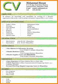 Modern Executive Resume Template Template Download Word Format Cv Word Format