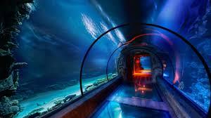Mandalay Bay 2 Bedroom Suite Underwater Hotel The Maldives The Secret Underwater Passage